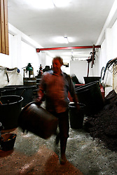 A fine giornata tutti i contadini mettono a posto la cantina ripulendola, affinchè sia tutto in ordine.