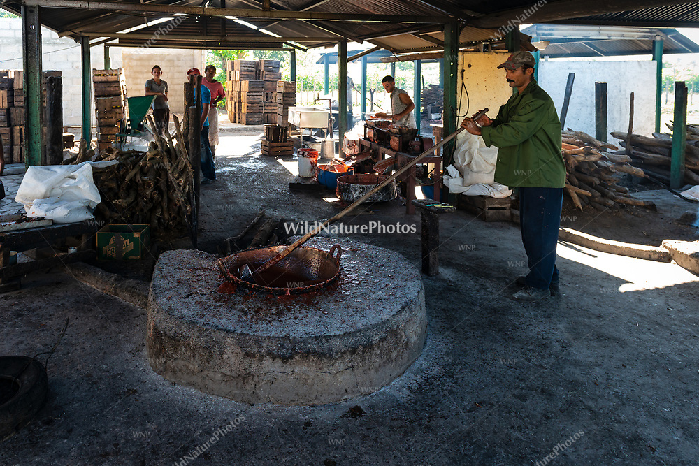 Workers reduce the guava-sugar mixture over heat during the process of making Guyaba bars (Florida, Camagüay Province, Cuba).