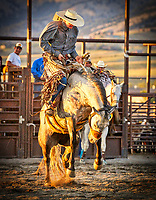Bozeman Rodeo Roundup at the Gallatin County Fair in Bozeman, Montana.