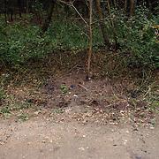NLD/Huizen/20050906 - Verbrand lijk gevonden langs bospad Bussummerweg Huizen, vindplaats, bos,