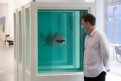 © Licensed to London News Pictures. 06/10/2020. London, UK. Artwork titled Myth Explored, Explained, Exploded (1993) by artist Damien Hirst is showing as part of his 'End of a Century' exhibition showing at the Newport Street Gallery. Photo credit: Ray Tang/LNP