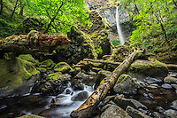 Elowah Falls in the Columbia River Gorge during the flower stream flows of Summer still provide a dramatic waterfall view from the riverbed.