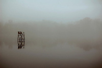 A lifeguard stand sits off-season in the midst of an autumn fog at Garrison Lake.