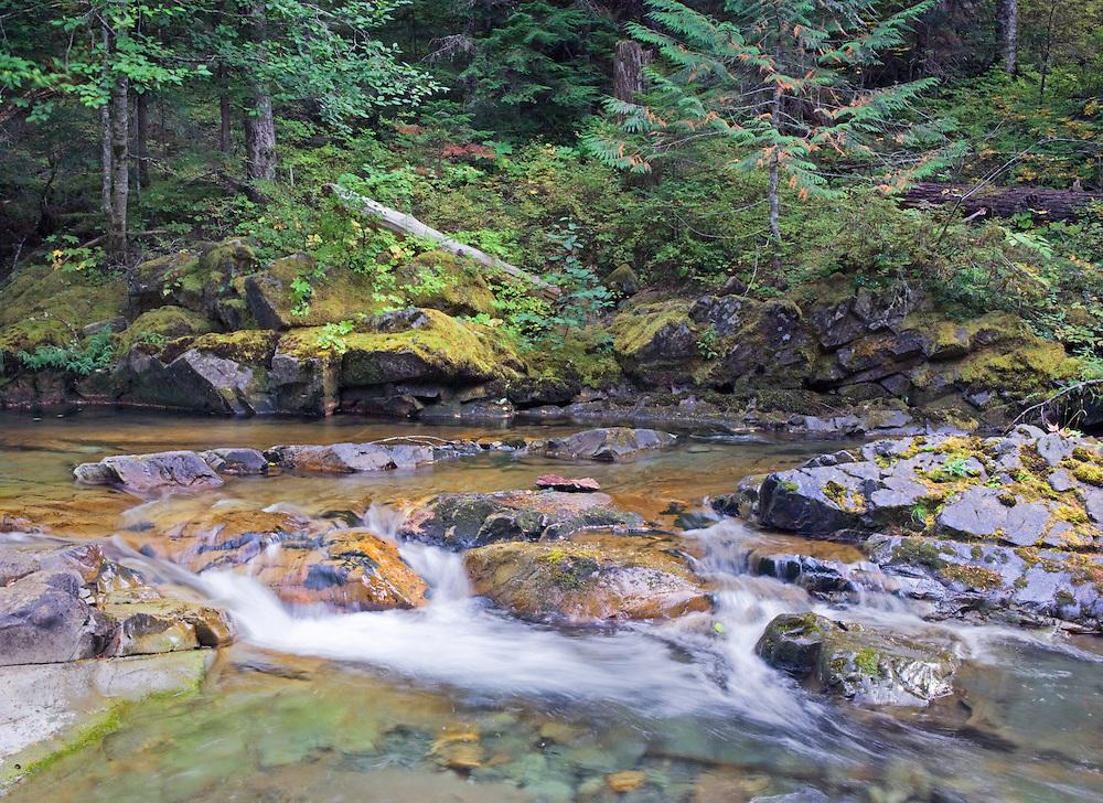 Quiet Autumn Afternoon on Panther Creek, Mt. Rainier Nat. Park, WA.