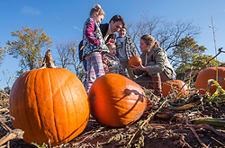 Liberal leader Justin Trudeau picks pumpkins with his wife Sophie and daughter Ella-Grace, sons Xavier and Hadrien Monday, October 12, 2015 in Gatineau, Que. THE CANADIAN PRESS/Paul Chiasson /ABACAPRESS.COM    521043_015 Gatineau Canada