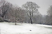 Child toboggans on winter's day down snow-covered Hampstead Heath, North London, England, United Kingdom