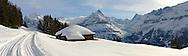 Swiss chalet on the Busalp toboggan slopes - near Grindelwald - Swiss Alps - Switzerland