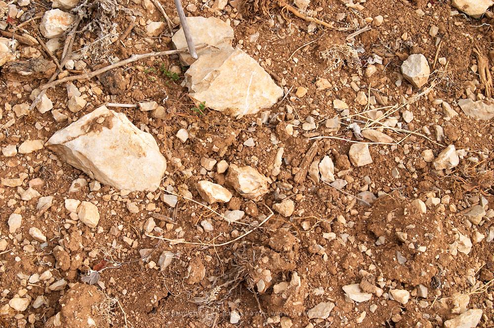 Chateau de Lascaux, Vacquieres village. Pic St Loup. Languedoc. Syrah vines and Lascaux type of calcareous rock and sandy/clay soil. Terroir soil. France. Europe. Soil with stones rocks. Clay. Sand. Calcareous limestone.
