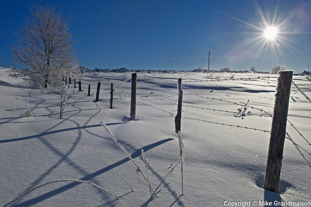 Fence and shadows in winter<br /> Bourget<br /> Ontario<br /> Canada