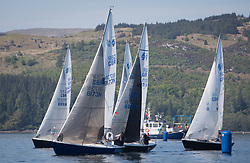 Sailing - SCOTLAND  - 25th-28th May 2018<br /> <br /> The Scottish Series 2018, organised by the  Clyde Cruising Club, <br /> <br /> First days racing on Loch Fyne.<br /> <br /> National Sonata Class, Start, GBR8173N, Kalm, Steven Lyon, Cove, Sonata OD<br /> <br /> Credit : Marc Turner<br /> <br /> <br /> Event is supported by Helly Hansen, Luddon, Silvers Marine, Tunnocks, Hempel and Argyll & Bute Council along with Bowmore, The Botanist and The Botanist