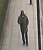 CCTV issued after man grabbed 11-year-old girl