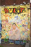 Bullit record store street art graffiti, Eindhoven city centre, North Brabant province, Netherlands