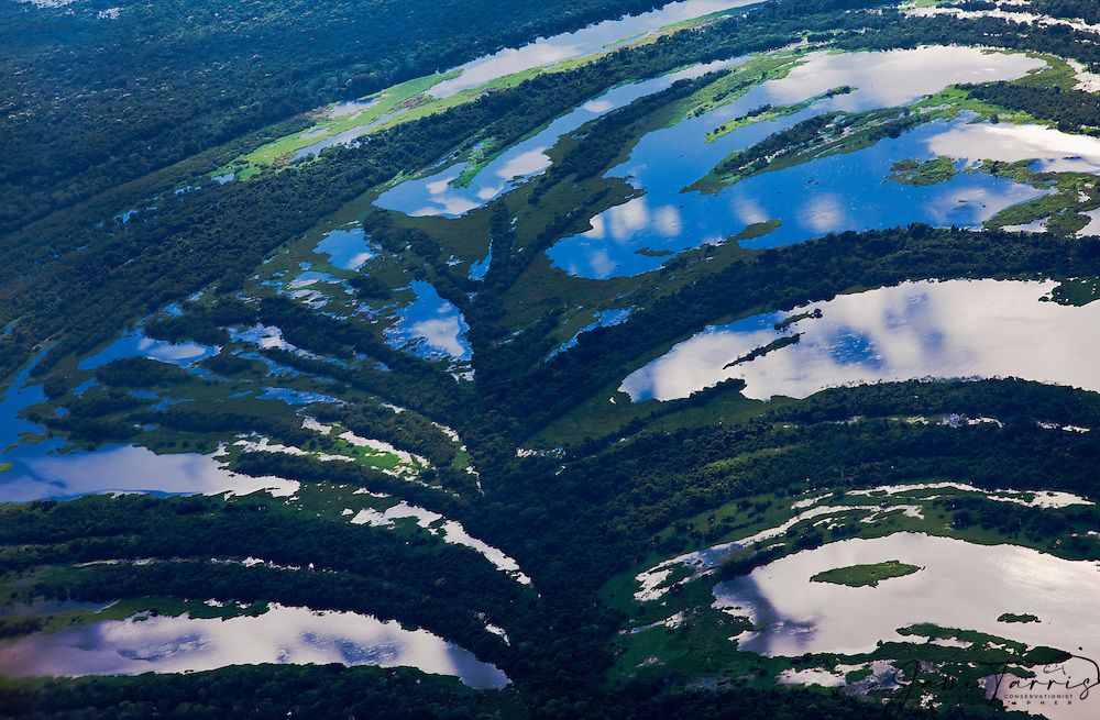 Aerial of small winding river and tree savannah, south of Amazon rain forest, Eastern Lowlands,  Bolivia,South America