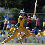 Lauren Ebsary batting during the match between Australia and Pakistan in the Super 6 stage of the ICC Women's World Cup Cricket tournament at Bankstown Oval, Sydney, Australia on March 16 2009, Australia won the match by 107 runs. Photo Tim Clayton