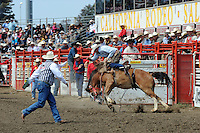 Nick Laduke, from Livermore, CA bursts out of the gate during Sunday's Day of Champions saddle bronc finale at the California Rodeo Salinas.
