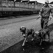 A man walks his dogs down a road in Creggan, a heavily Catholic area of Londonderry. This is where journalist Lyra McKee, 29 was fatally shot as she was covering rioting caused by policing in the area. Northern Ireland, September 2019