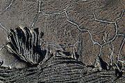 Recent Lava Flow<br /> Sullivan Bay<br /> Santiago<br /> Galapagos<br /> Ecuador<br /> South America