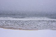 Falling snow on the beach, Quogue, Long Island, New York