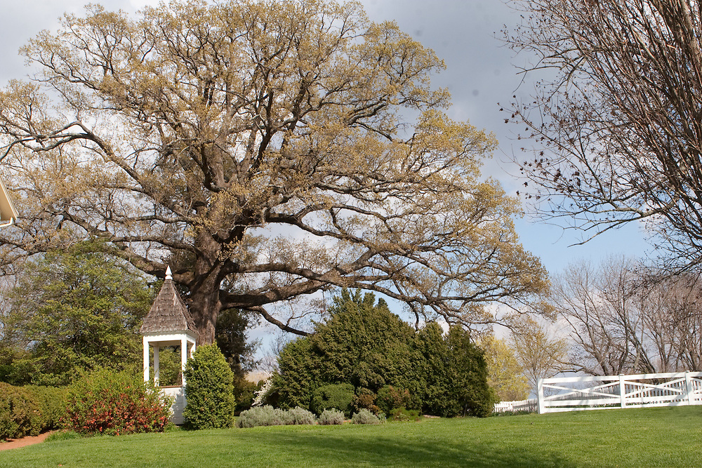 The grounds of Ash Lawn Highland, home of President James Monroe