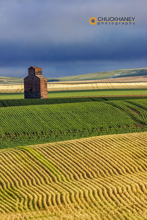Old wooden granary in Collins, Montana, USA