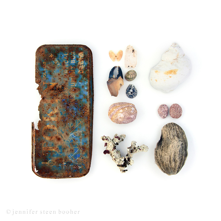 """Metal lid labelled """"Tokin Mathematical Instrument Box,"""" clam, coral, crab claw, Nerites (Nerita sp.), 'mudstone,' unidentified shell, coconut seed (Cocos nucifera)."""