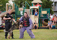 "Laconia Police Officer Mike Armstrong, ""Titan"" and Officer Tyler Babineau perform a K9 demonstration at Laconia's National Night Out at Blueberry Lane Apartments Tuesday evening.  (Karen Bobotas/for the Laconia Daily Sun)"