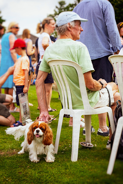 Elderly male figure wearing a blue faded cap sitting on a plastic chair with a King Charles Spaniel on a lead at a dog show in West Chiltington, West Sussex, England, UK