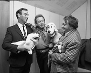 """Cork Made Toys Introduced.<br /> 1971.<br /> 21.10.1971.<br /> 10.21.1971.<br /> 21st October 1971.<br /> """"Judge"""" a new Irish made soft toy, modelled on the famous dog from RTE's popular children's programme """"Wanderly Wagon"""", was launched at a reception today. The launch was held in Ireland House, St Stephen's Green, Dublin 2.<br /> <br /> Picture shows """"Judge"""" admiring the model made in his likeness, he is accompanied by (L-R), Mr Gerard Colley, Managing Director, Orla Agencies ltd; mr Bill Golding, Cast member of Wanderly Wagon and mr Eugene Lambert, puppeteer who designed the original dog."""