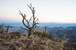 View from South Rim of Chisos Mountains into Mexico, Big Bend National Park, Texas, USA.