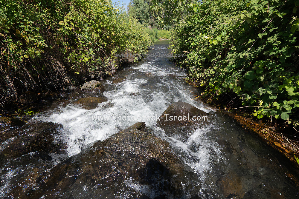 Ein Tina (AKA Ein Notera) a natural water spring in the Golan Heights, Israel. Most of the water is collected by local farmers and kibbutzim for irrigation of the fields