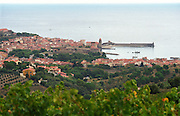The Collioure village with the famous church Notre Dame des Anges in the harbour, stone houses and red rooftops. Vineyards in the foreground, Languedoc-Roussillon, France Grain grainy.