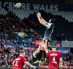 James King of Ospreys claims the lineout<br /> <br /> Photographer Simon King/Replay Images<br /> <br /> Guinness PRO14 Round 11 - Ospreys v Scarlets - Saturday 22nd December 2018 - Liberty Stadium - Swansea<br /> <br /> World Copyright © Replay Images . All rights reserved. info@replayimages.co.uk - http://replayimages.co.uk