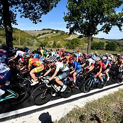 26-09-2020: wielrennen: WK weg vrouwen: Imola<br /> peloton in Toscaans landschap<br /> 26-09-2020: wielrennen: WK weg vrouwen: Imola