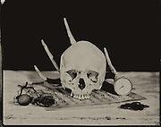 """Images from """"Vanitas Fair,"""" a collection of tintypesinvestigating mortality through modern recreations of vanities, memento mori and nature morte paintings."""