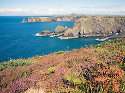 Coastal scenery near Trefin, Pembrokeshire Coast national park, Wales