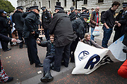 Extinction Rebellion protesters are arrested at St Jamess Park on the 7th October 2019 in Central London in the United Kingdom. Extinction Rebellion protesters occupy locations across central London including Westminster Bridge, Whitehall and Trafalgar Square in a wave of protests planned to continue for 2 weeks.