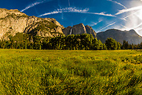 Yosemite Valley (Upper Yosemite Fall in background), Yosemite National Park, California USA.