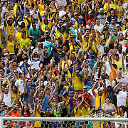 Brazilian fans celebrate a goal during the Brazil V Argentina International Football Friendly match at MetLife Stadium, East Rutherford, New Jersey, USA. 9th June 2012. Photo Tim Clayton