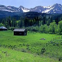 MONTANA. Old cabin east of the Bridger Mts. near Sedan, MT. (NE of Bozeman)