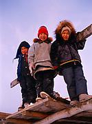 Inupiat children Jonna, Rodney and Ralph playing on meat and boat rack, village of Wainwright, Arctic Coast of Alaska.