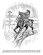 Keen motorist, taking horseback exercise by doctor's orders, has momentary relapse while trying to steer round corner.