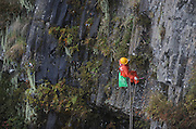 EMEISHAN, CHINA - OCTOBER 05: (CHINA OUT) <br /> <br /> Cleaner On The Cliff<br /> <br /> 44-year-old cleaner Peng Wencai collects garbage thrown by tourists at the cliff of Emei Mountain on October 5, 2014 in Emeishan, Sichuan Province of China. Peng has been doing the job for 14 years. <br /> ©Exclusivepix