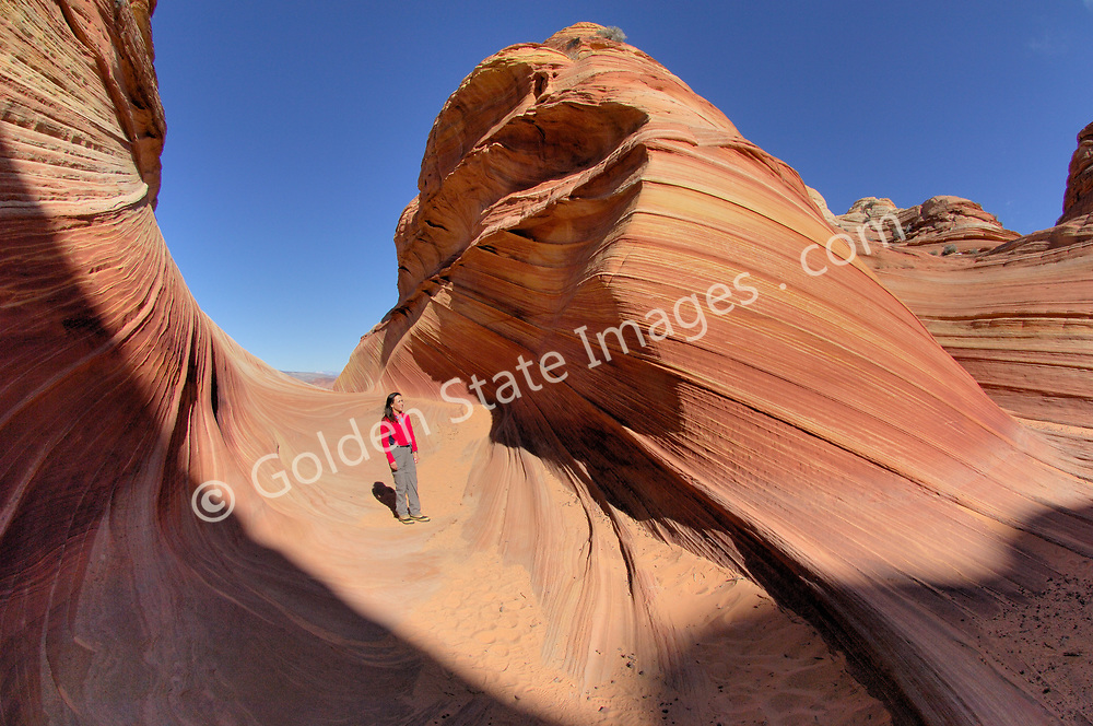"""Hiker enjoys the shapes and forms of the sandstone rock within the wave.<br /> <br /> Paria Canyon - Vermillion Cliffs Wilderness area in Southern Utah.<br /> <br /> Coyote Buttes North located in the Paria Canyon - Vermilion Cliffs Wilderness. This area features one of the most well-known geologic sandstone formations in the world, called """"The Wave"""".<br /> <br /> The Wave is a spectacular area of sandstone formations twisted into the shapes of breaking waves pillars cones and mushrooms.<br /> <br /> An ancient sea laid down layers of sediment deposits which hardened to form the multicolored sandstone rock. Over eons the actions of water the cycles of baking heat and subfreezing temperatures and wind have formed its complex undulating shapes.<br /> <br /> The deep reds of the rock and their shapes appear to change with the seasons and time of day."""