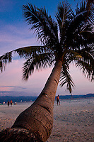 A single palm tree sits amongst the lingering colours of a beautiful sunset on White Sand Beach, Boracay, Philippines.