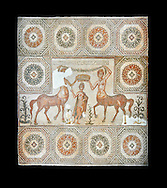 4th century Roman mosaic panel of the Goddess Venus from Ulules (Elles), Tunisia. Venus of Aphrodite is accompanied by 2 female centaurs, half women half horse creatures, known as Am(azoniu) and Titonius. The are crowning Venus The Bardo Museum, Tunis, Tunisia. The Bardo Museum, Tunis, Tunisia. Black background .<br /> <br /> If you prefer to buy from our ALAMY PHOTO LIBRARY  Collection visit : https://www.alamy.com/portfolio/paul-williams-funkystock/roman-mosaic.html - Type -   Bardo    - into the LOWER SEARCH WITHIN GALLERY box. Refine search by adding background colour, place, museum etc<br /> <br /> Visit our ROMAN MOSAIC PHOTO COLLECTIONS for more photos to download  as wall art prints https://funkystock.photoshelter.com/gallery-collection/Roman-Mosaics-Art-Pictures-Images/C0000LcfNel7FpLI