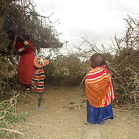 """Narasha, prepares to set a fence around her home.<br /> <br /> """"We bundle up dried up and fallen Acacia branches to create a fence around our homes, to ward off wildlife. Although some have become clever and jump over the fence or dig up a hole under the fence."""" ~ Narasha Kamunke"""