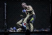 Kampfsport: MMA, We love MMA, Oberhausen, 31.01.2015<br /> Christian Skorzik (JKD Akademie NRW, r.) - Daniel Duecker (Fight Center Siegen)<br /> © Torsten Helmke