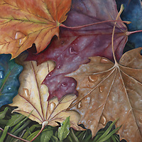 Freshly fallen maple leaves, wet with dew, reflect the morning light in the season's riot of color. <br /> 15 x 30, oil on birch panel