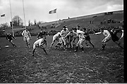 19/01/1963<br /> 01/19/1963<br /> 19 January 1963<br /> International Rugby Trials at Lansdowne Road, Dublin. Kelly gathers pass after line-out with packs.