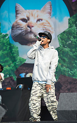 © London News Pictures. 25/08/2012. Reading, UK. Odd Future' perform on the main stage on day two of Reading Festival 2012 in Reading, Berkshire, UK on August 25, 2012. The three day event which attracts over 80,000 music fans headlines The Cure, Kasabian and The Foo Fighters Photo credit : Ben Cawthra/LNP